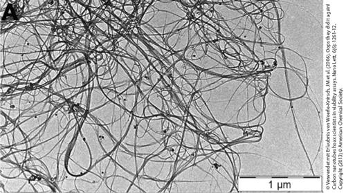 TEM-Aufnahme von Kohlenstoff-Nanoröhrchen (CNTs).