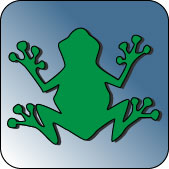 Icon Frosch